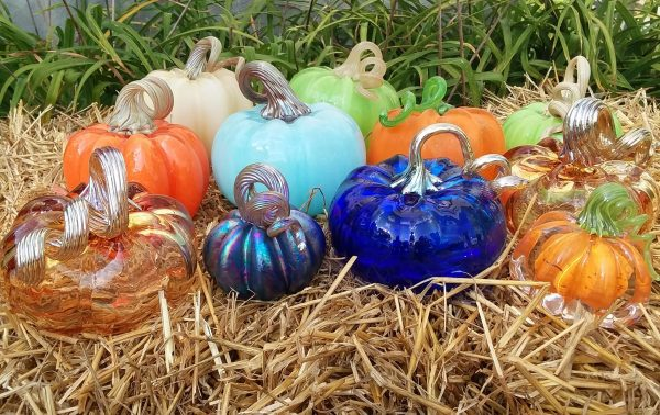 Pumpkin Cobalt Transparent